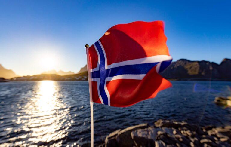 Norwegian Bert Module